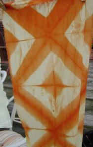 Coreopsis dipped/ shibori